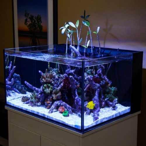 Innovative Marine Nuvo Fusion 50 Gallon Lagoon Tank Amp High